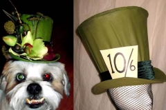 Olive & Mad Hatter